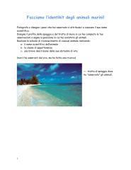 schede_animali_marini.pdf