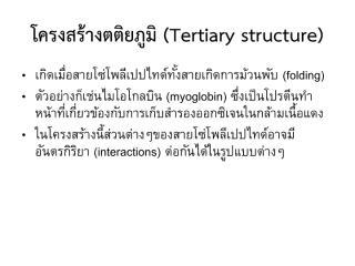 protein2.pdf